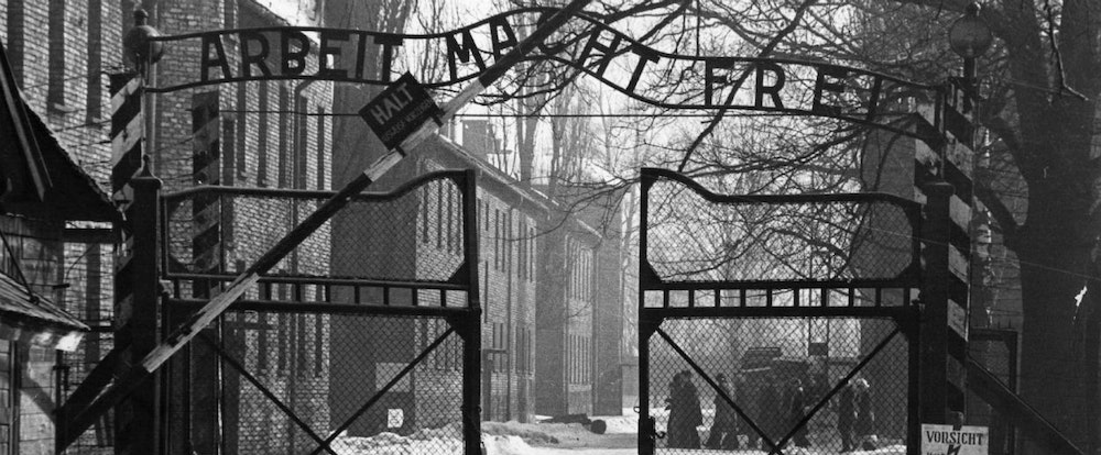 survival in auschwizt In survival in auschwitz, primo levi explores the nazis' systemic method of extermination and labor which at times stripped him of his humanity and sense of self.