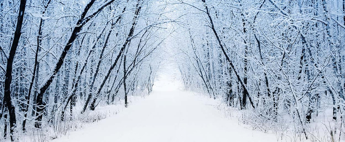 Robert Frost A Winter Eden And Stopping By Woods On A Snowy Evening  Two Robert Frost Poems That Will Leave You Eager For Winter