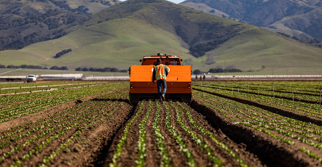 Farms Can't Save the Planet