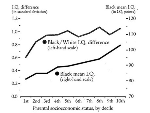 Iq And Fade Out Effect Environmental >> Race Genes And I Q The New Republic S Bell Curve Excerpt The