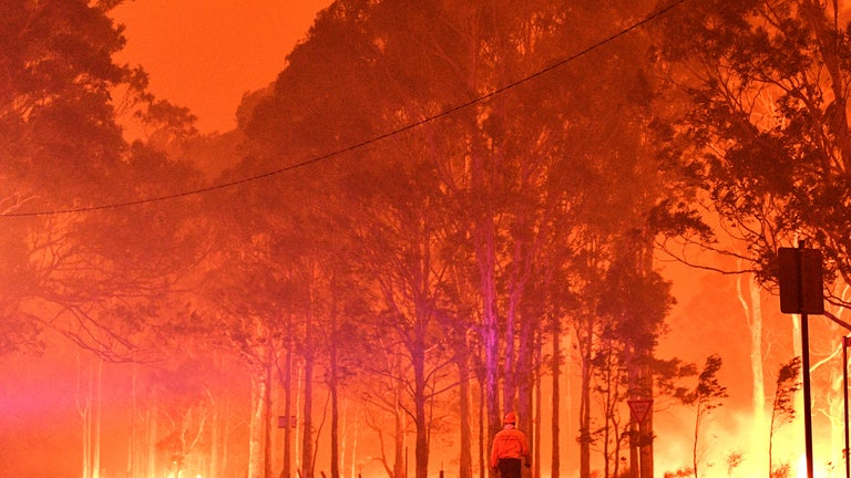 A firefighter walks past burning trees in New South Wales, Australia, in 2019.