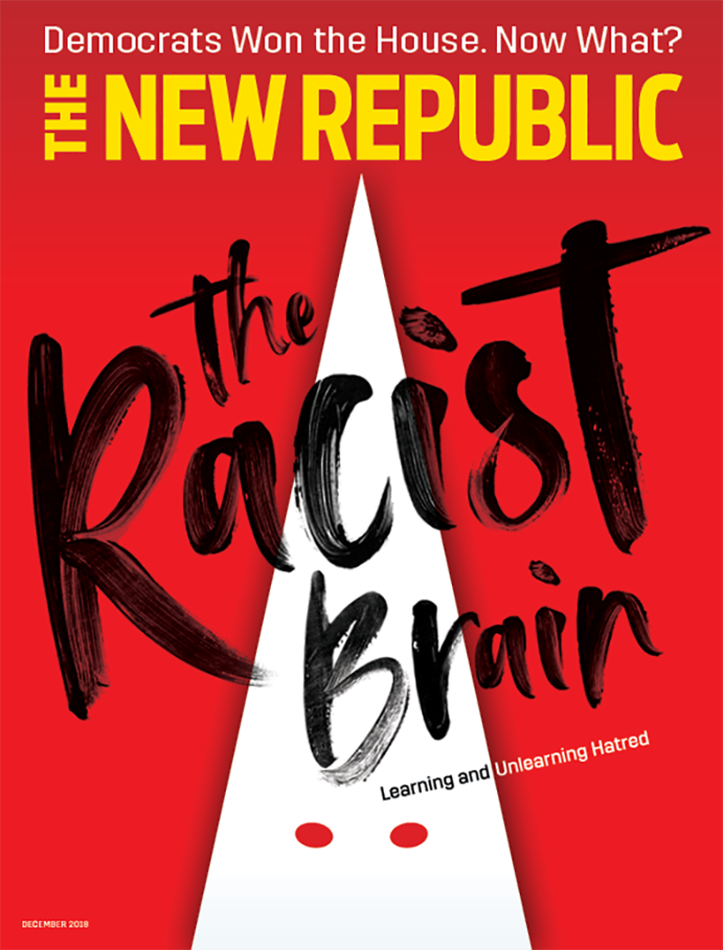 Image result for new republic racist brain