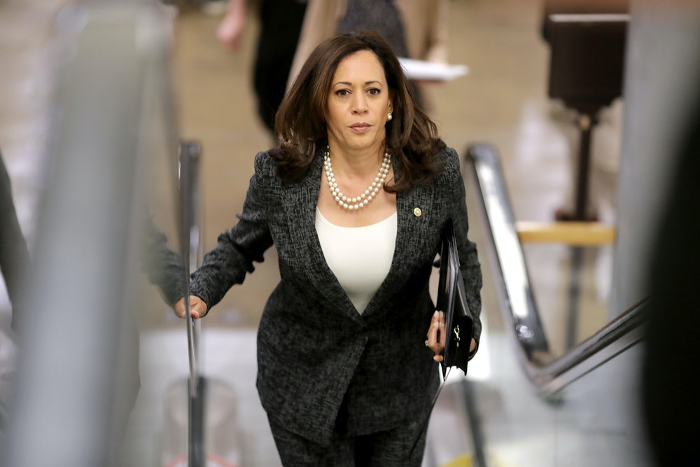 The Left S Misguided Debate Over Kamala Harris The New