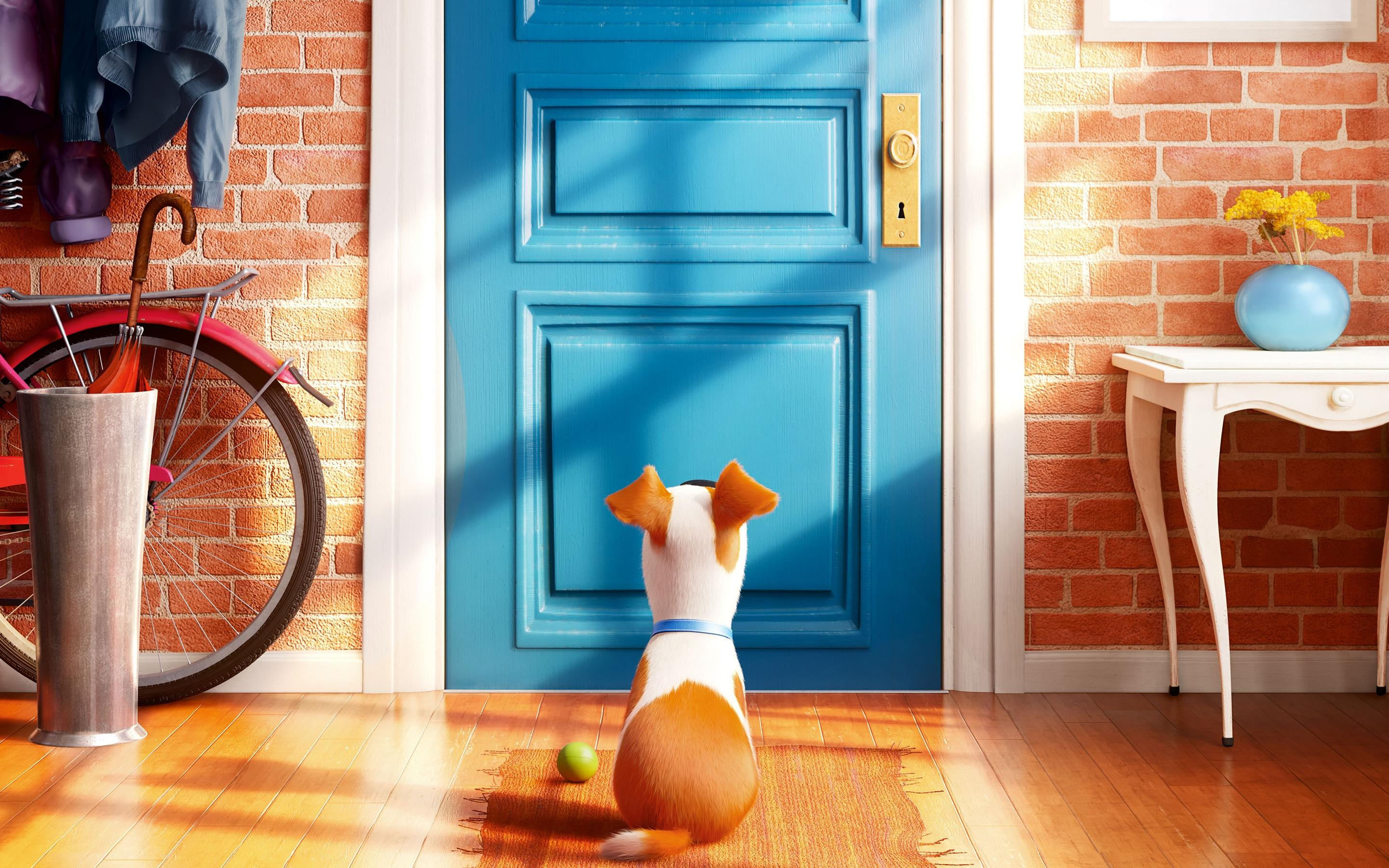 The Secret Life Of Pets Homeward Bound But Lacking Charm The New Republic
