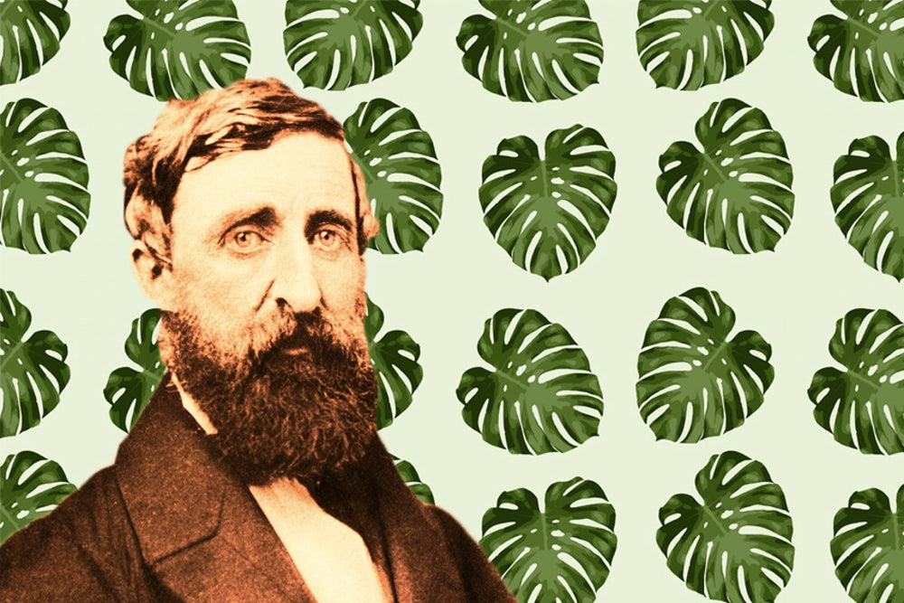 What Would Thoreau Think of Climate Change? | The New Republic