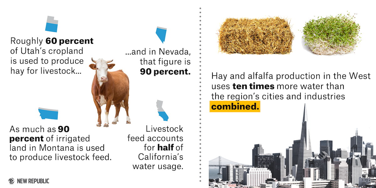 agriculture water consumption choice image