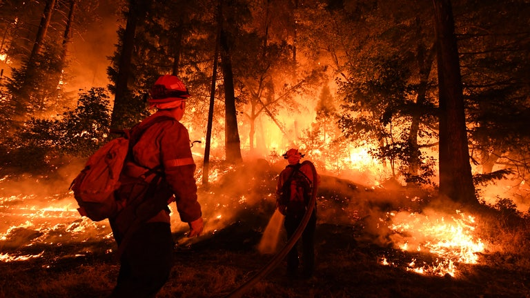 Firefighters battle the Carr fire in 2018.