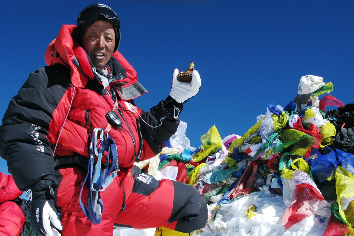 Image result for apa sherpa