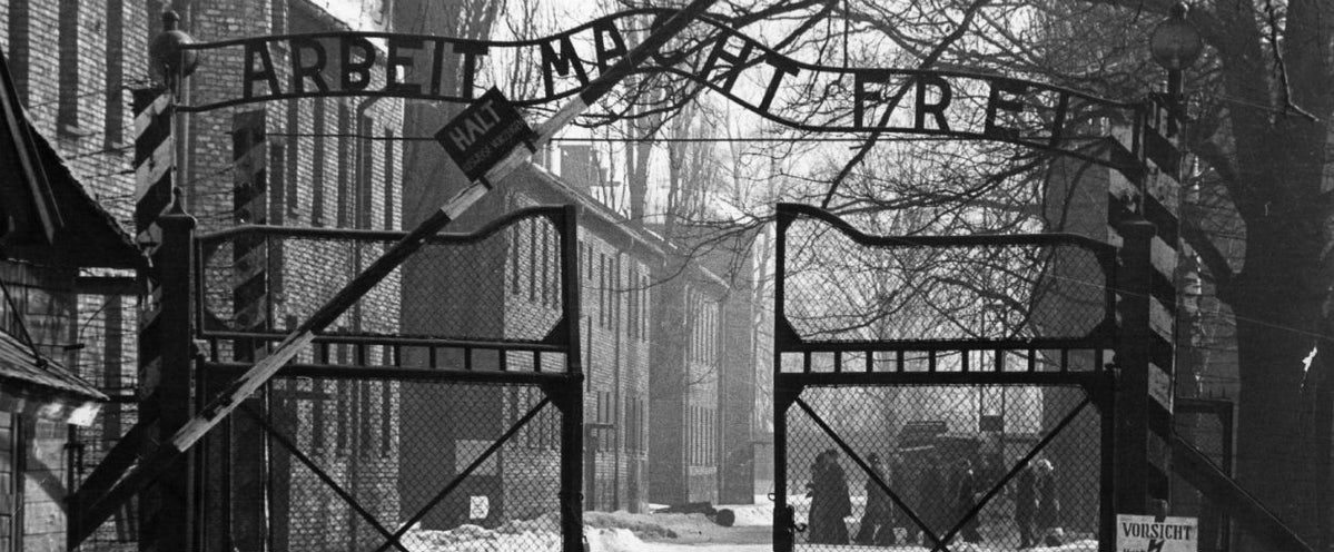 Interview With Primo Levi On Survival In Auschwitz The New Republic
