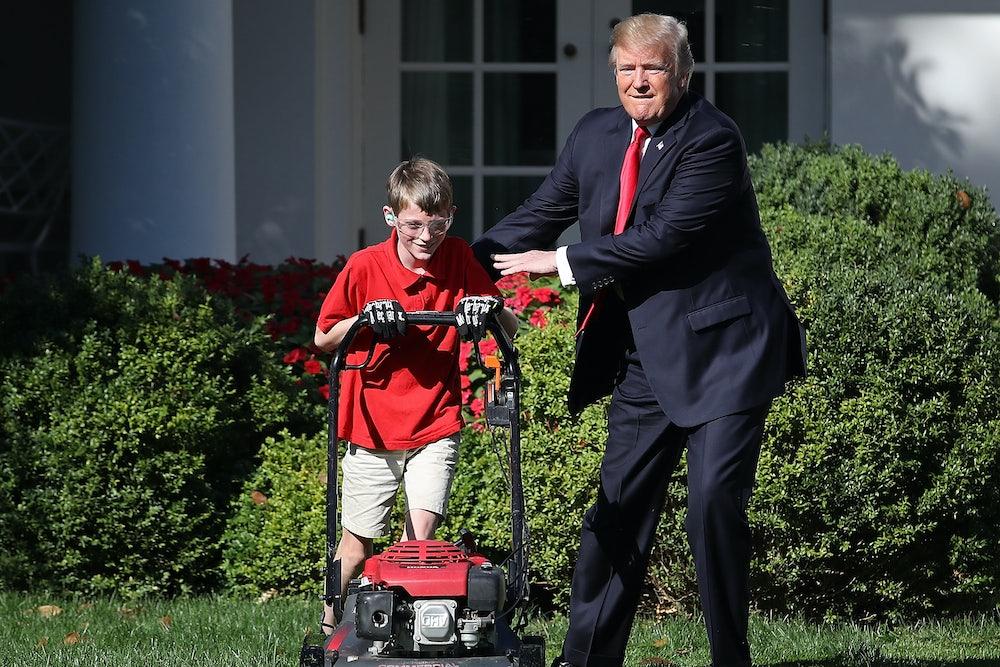 Nancy Pelosi Teenager Donald Trump, the Teen...