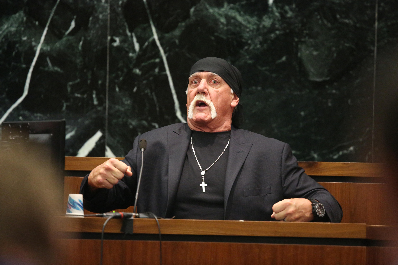 Hulk Hogan Gay Sex