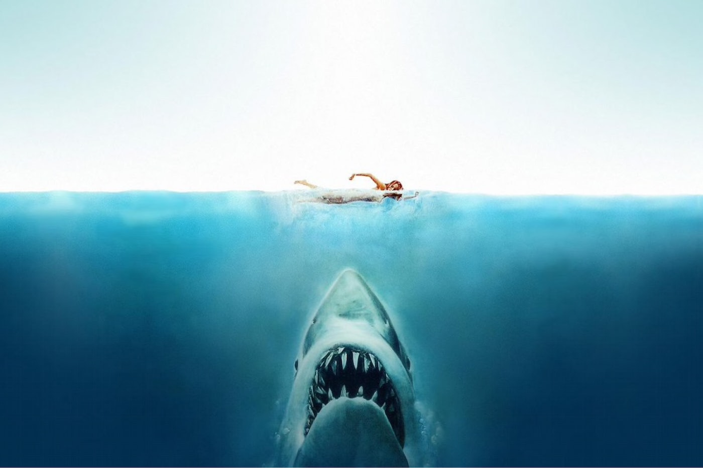 Jaws- Disappointing continuation