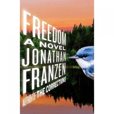 dom by jonathan franzen reviewed by ruth franklin new republic  20 2010